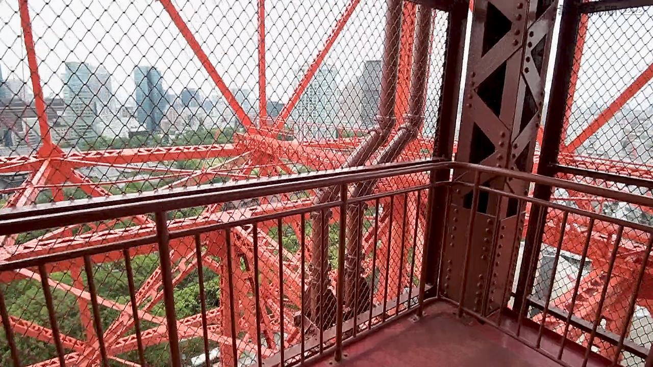 東京タワーが営業再開